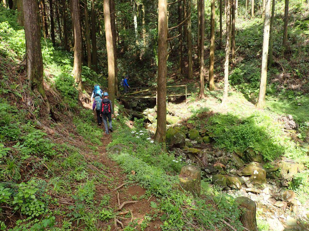 ハイキングの道をたどって入渓点まで下降する。